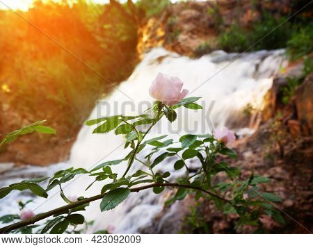 Beautiful Small Waterfall On The Background Of Nature Landscape.