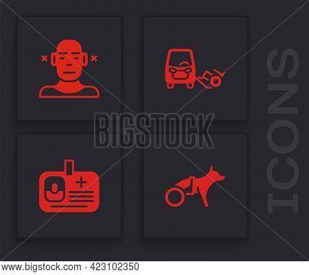 Set Dog In Wheelchair, Deaf, Disabled Car And Identification Badge Icon. Vector