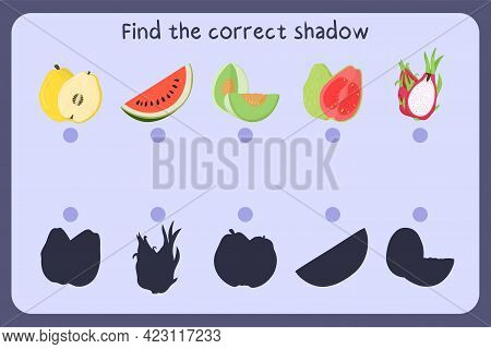 Matching Children Educational Game With Food - Quince, Watermelon, Melon Honeydew, Guava, Dragon Fru
