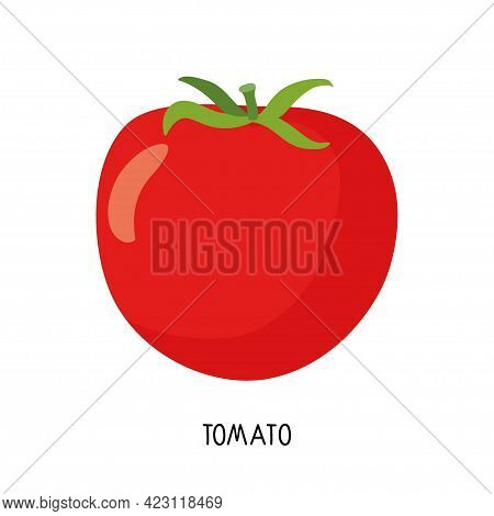 Tomato Isolated On White. Healthy Eating Design. Vegetable Ingredients For Cooking. Flat Design For