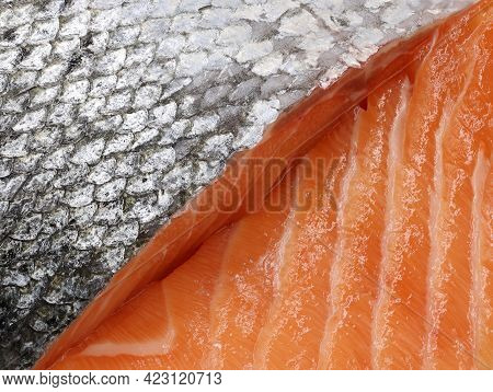 Detail Close Up Of Sliced Salmon, Background Of Silver Skin And Structured Fresh Meat Of Salmon Fish
