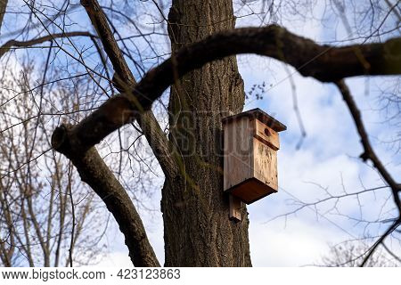 Classic Wooden Birdhouse On A Tree In Spring