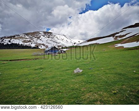 Summer In The Mountains . Summer Landscape In The Mountains