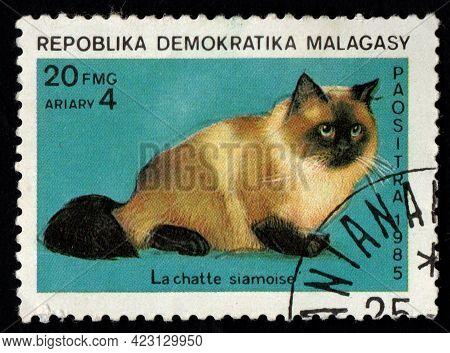 Malaysia - Circa 1987: Malagasy Malagasy Postage Stamp Dedicated To Thoroughbred Siamese Cat. Feline