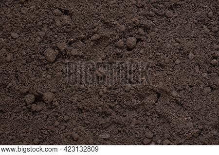 Soil Background, Texture Of Fertile Soil Close-up, Top View, Concept Of Agriculture, Farming, Vegeta