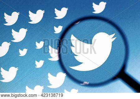 June 8, 2021, 2021, Brazil. In This Photo Illustration The Twitter Logo Is Seen On The Computer Scre