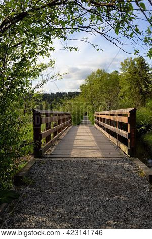 View Of A Wooden Path With Green Fresh Trees In Shoreline Trail, Port Moody, Greater Vancouver, Brit