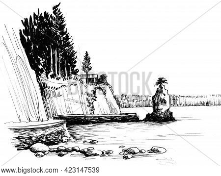 Stanley Park In Vancouver, British Columbia, Canada. Ink Black And White Drawing