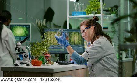 Botanist Researcher Typing Medical Expertise On Computer While Analyzing Sample Leaf For Biological