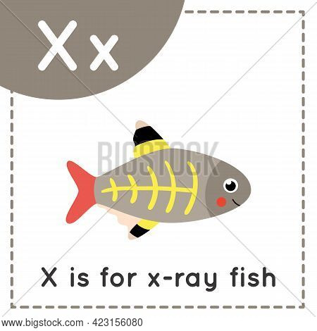 Animal Alphabet Flashcard For Children. Learning Letter X. X Is X Ray Fish.