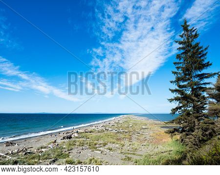 Scenic View Of Dungeness Spit, The Longest Sand Spit In The Us, On A Sunny Day - Olympic Peninsula,