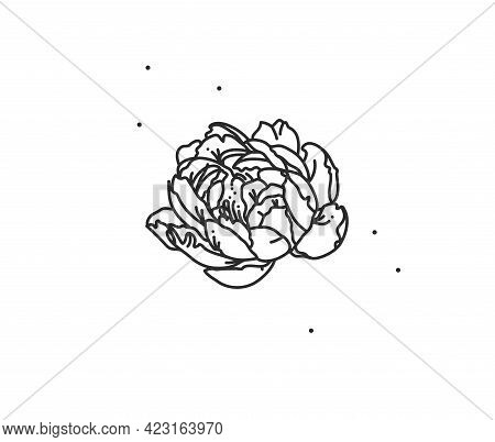 Hand Drawn Vector Abstract Stock Flat Graphic Illustration With Logo Element Of Line Flower Art Of P