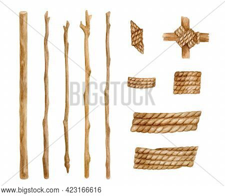 Watercolor Ropes And Wood Branches Set. Hand Drawn Jute Spiral Cord With Bare Tree Trunks Illustrati