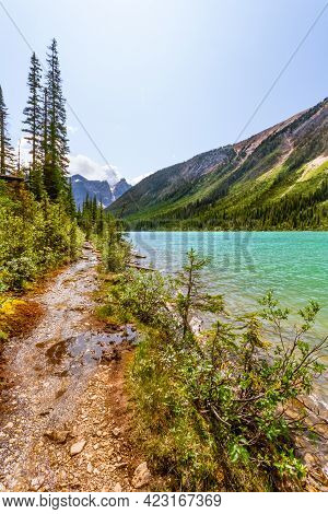 Hiking Trail In The  Rocky Mountains. A Narrow And Wetland Trail Leading Along Sherbrooke Lake.  Yoh
