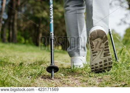Trekking Hike In Nature. Close-up Of Women's White Shoes And Nordic Walking Poles Outdoors On A Summ