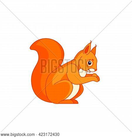 Squirrel, Sitting Side Ways, Holding A Hazel Nut In Front Paws And Eating From It. Tail Up. Cartoon