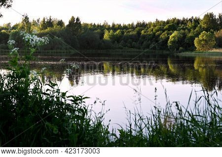 Beautiful Summer Sunny Landscape With A Calm River, Trees And Wooded Banks On The Other Side. Blue S
