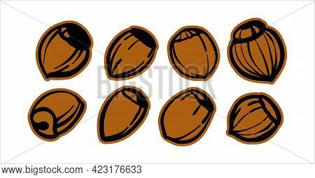 Set Of Illustrations Black And White Sketches. Hazelnuts, Hazelnuts. Logo Or Logo For Printing On Th