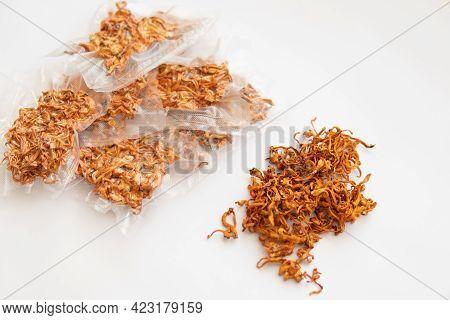 Militaris Mushroom. Dry Cordyceps. Fungi For Human Health. Militaris Mushroom. Dry Cordyceps. Dry Fr