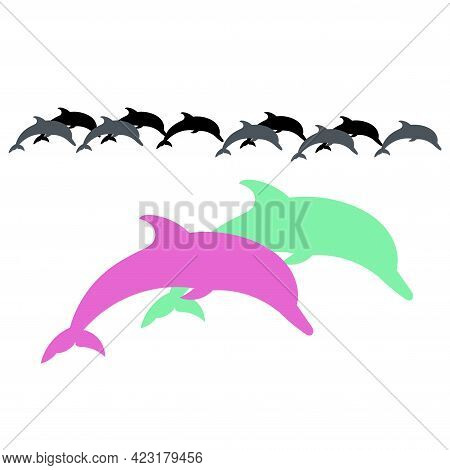 Two Colored Jumping Dolphins. Vector Illustration Dolphin Sign