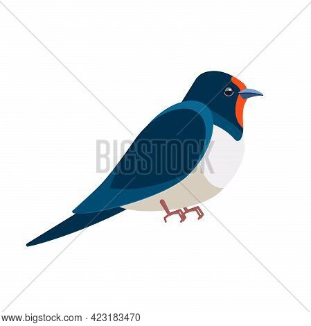 Swallows, Martins, And Saw-wings, Or Hirundinidae, Are A Family Of Passerine Birds. Bird Cartoon Fla
