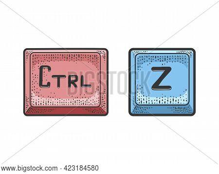 Control Z Computer Keyboard Keys Undo Combination Color Line Art Sketch Engraving Vector Illustratio