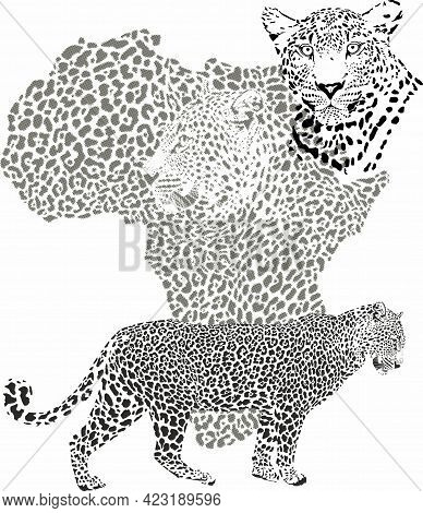 Vector Illustration With Leopard Fur Pattern And Leopard Head Background With African Continent Map