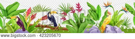 Jungle Floral Seamless Border, Vector Tropical Exotic Nature Background, Toucan, Parrot, Paradise Fl