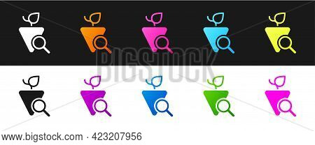Set Grapes Icon Isolated On Black And White Background. Selection Of Grapes. Vector