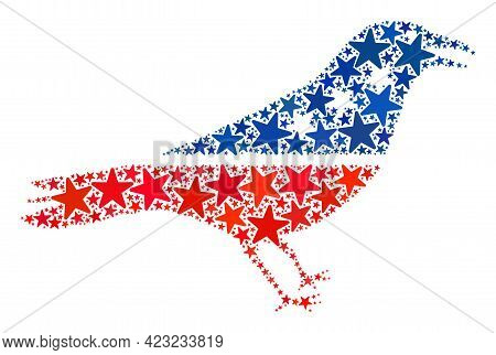Crow Bird Collage Of Stars In Various Sizes And Color Tinges. Crow Bird Illustration Uses American O