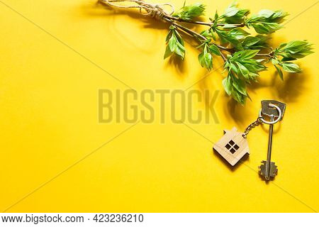 House Key With Keychain On Yellow Background And Spring Bouquet Of Branches With Leaves. Farmhouse,