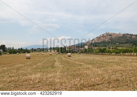Panoramic View Of Trevi Medieval Town And Subasio Mountain During Summer Day Of June In Umbria, Ital