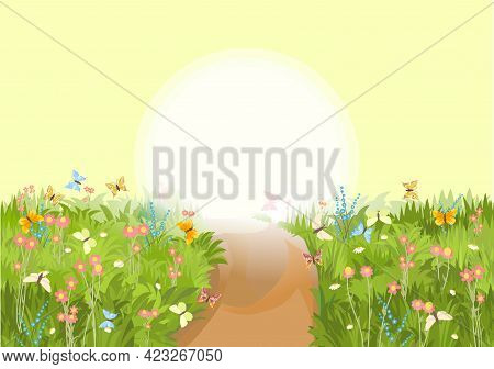 Road. Meadow With Wildflowers And Butterflies. Sunrise. Illustration. Grass Close-up. Green Landscap