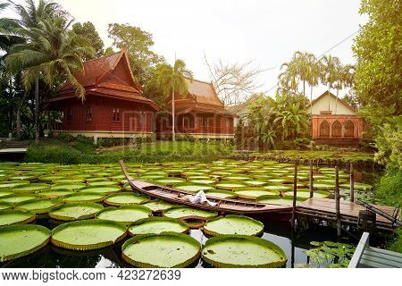 Asian Girl Is Lying Down On The New Vintage Wood Boat On The Lily Lotus Leaf Pond At Outdoor Field.