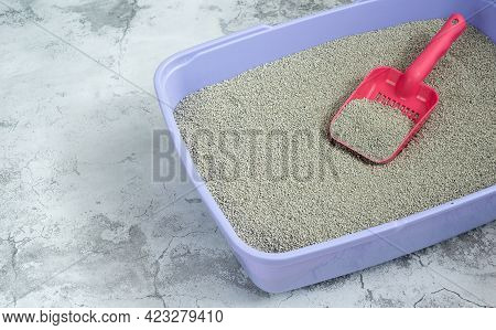 Clean Sand In Cat Litter And Scoop, Pet Hygiene