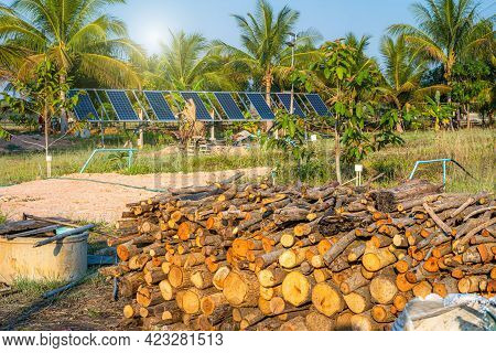 Pile Of Firewood For Preparing The Charcoal Tribe And Solar Panel For Agriculture In A Rural Houses