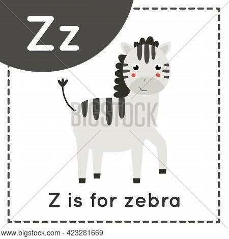 Animal Alphabet Flashcard For Children. Learning Letter Z. Z Is Zebra.
