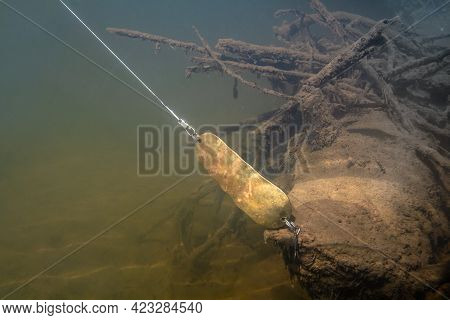 A Spinning Lure (a Bronze Spoon) Caught On A Snag At The Bottom Of The River. Underwater Photography