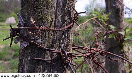 Old Wooden Fence With Rusty Barbed Wire. A Fence Next To A Rural Road. Vintage Look. A Wooden Post A