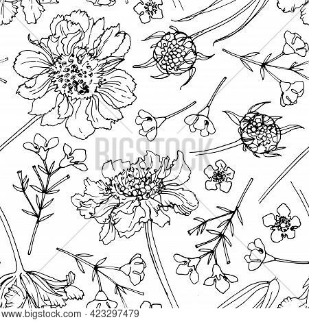 Flower Pattern Vector Sketch Of Flowers By Line On A White Background. Decor