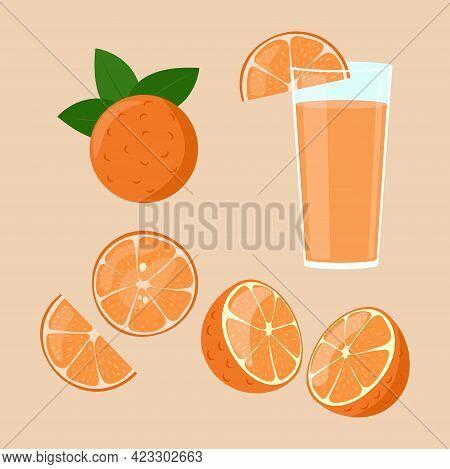 Orange Juice Isolated. Slices In Cut Set. Half Of Orange Fruit. Vector Illustration.