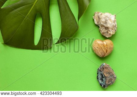 A Variety Of Colored Stones With Leaf Of Green Monstera As A Summer Background Close-up. Minerals An