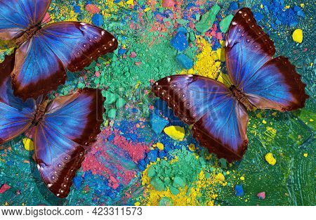 Colorful Background Of Pastel Powder. Multicolored Abstract Background. Bright Blue Morpho Butterfli