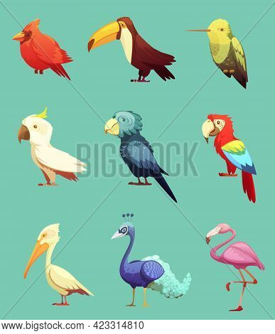 Exotic Tropical Paradise Island Birds Retro Cartoon Style Icons Collection With Toucan And Cockatoo