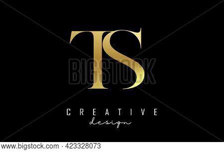 Golden Ts T S Letter Design Logo Logotype Concept With Serif Font And Elegant Style. Vector Illustra