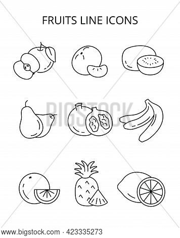 Natural Fruits Grown On A Farm. Eco Products. Vector Icons In Flat Style