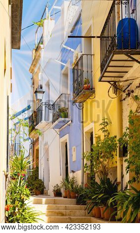 Vivid Narrow Street With Colorful Houses And Potted Plants In Ancient Neighborhood El Barrio Or Casc