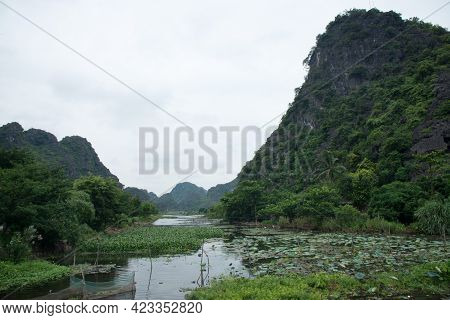 Green Landscape In Vietnam On A Cloudy Day. Water Lilly And Mountains Along The River. Tam Coc, Viet