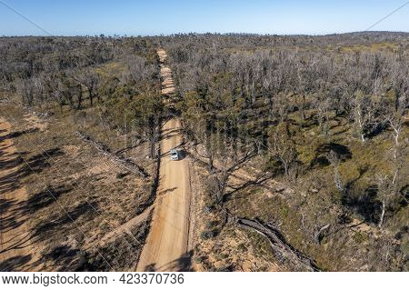 Drone Aerial Photograph Of A Truck Driving On A Dirt Road In A Forest Regenerating From Bushfire In
