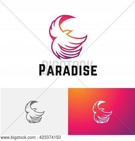 Beautiful Paradise Bird Fire Phoenix Flying Wildlife Reserve Zoo Logo